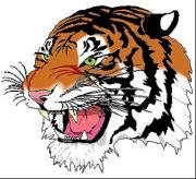North Salem Central School District Logo